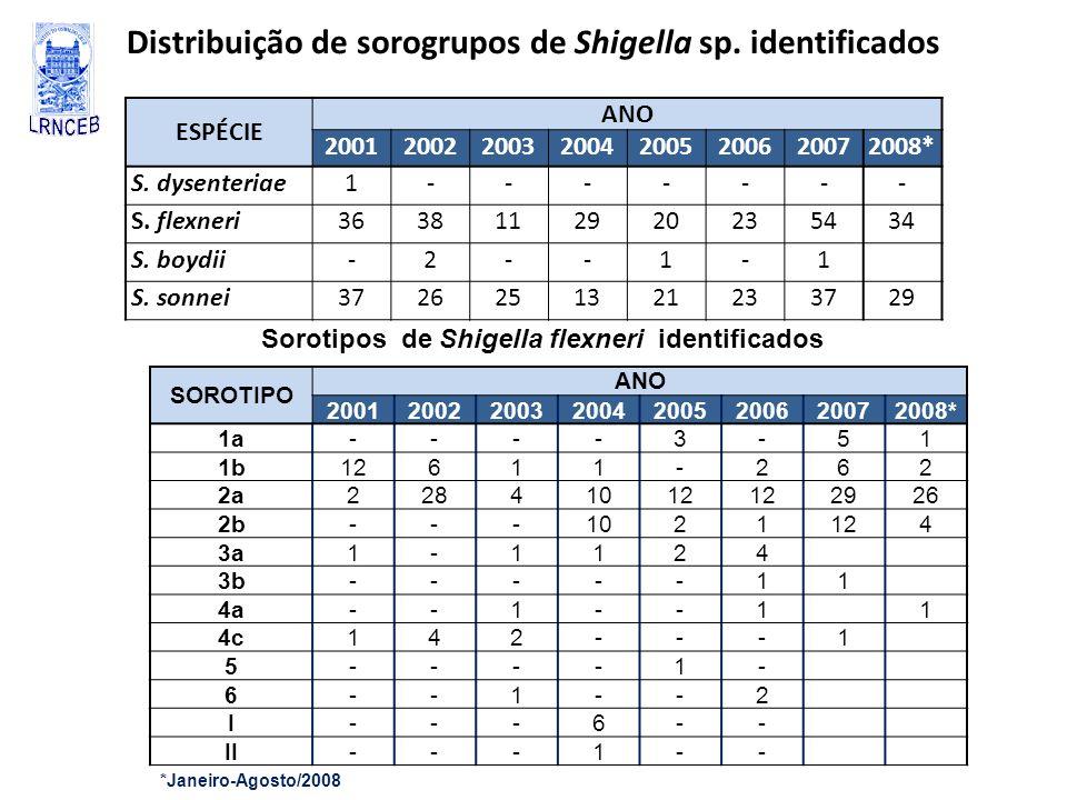 Distribuição de sorogrupos de Shigella sp. identificados ESPÉCIE ANO 20012002200320042005200620072008* S. dysenteriae1------- S. flexneri3638112920235
