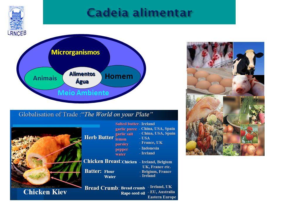 Animais Homem AlimentosÁgua Microrganismos Meio Ambiente