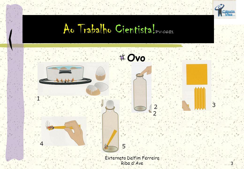 Externato Delfim Ferreira Riba d Ave3 Ovo 1 2 3 4 5 2 Ao Trabalho Cientista! PV-0681