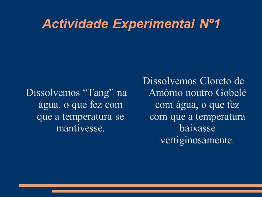 Actividade Experimental Nº1 Dissolvemos Tang na água, o que fez com que a temperatura se mantivesse. Dissolvemos Cloreto de Amónio noutro Gobelé com á