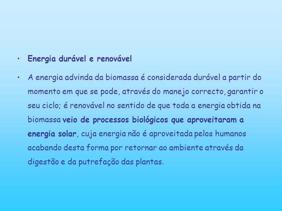 A importância da bioenergia A bioenergia pode contribuir para a redução do CO2 na atmosfera e consequentemente a redução do efeito estufa.