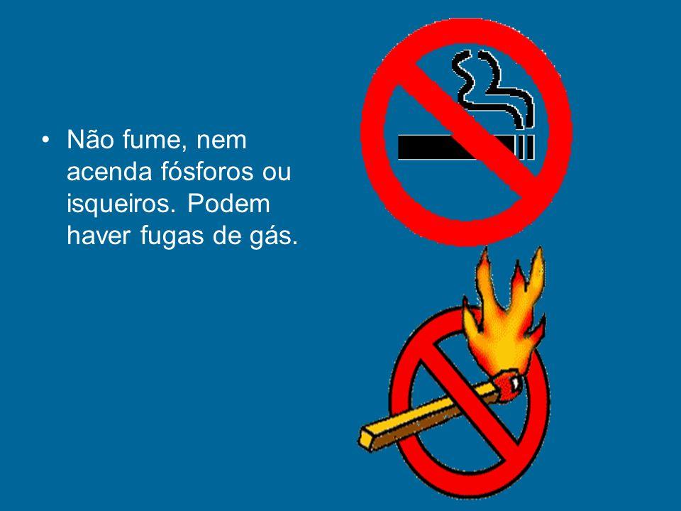 Não fume, nem acenda fósforos ou isqueiros. Podem haver fugas de gás.