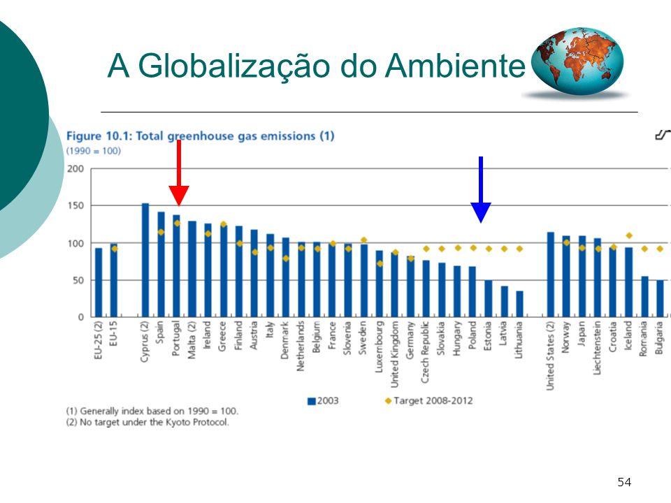 54 A Globalização do Ambiente
