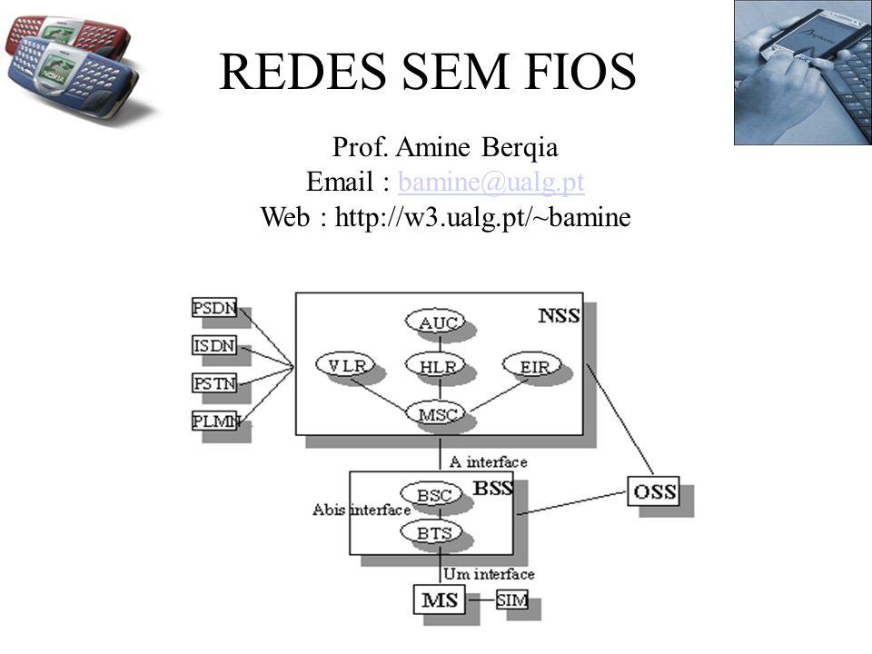 REDES SEM FIOS Prof.