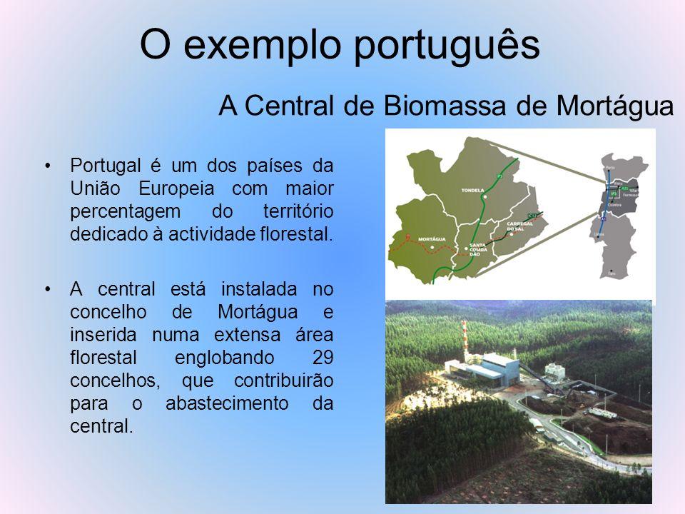 O exemplo português Portugal é um dos países da União Europeia com maior percentagem do território dedicado à actividade florestal. A central está ins