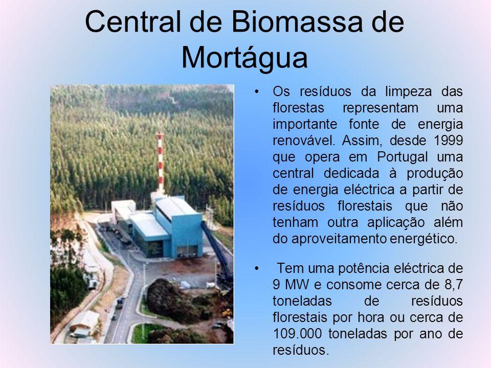 Central de Biomassa de Mortágua Os resíduos da limpeza das florestas representam uma importante fonte de energia renovável. Assim, desde 1999 que oper
