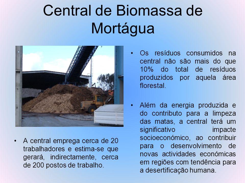Central de Biomassa de Mortágua Os resíduos consumidos na central não são mais do que 10% do total de resíduos produzidos por aquela área florestal. A