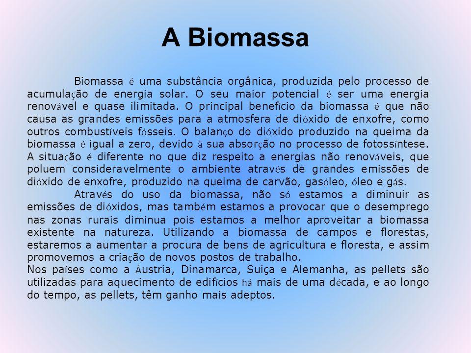 Combustíveis Biomassa Combustíveis Biomassa (alimentadores) incluem: –Madeiras & resíduos (cavaco, serragem, pellets, pedaços de madeira) –Resíduos agrícolas (palha, cascas, estercos e urina de animais) –Sementes energéticas (choupos híbridos, relva, salgueiros) –Resíduos Sólidos Urbanos (RSU´s) Considerações importantes sobre a biomassa –Poder calorífico –Confiabilidade, segurança e estabilidade de preços –Condições de transporte e armazenamento