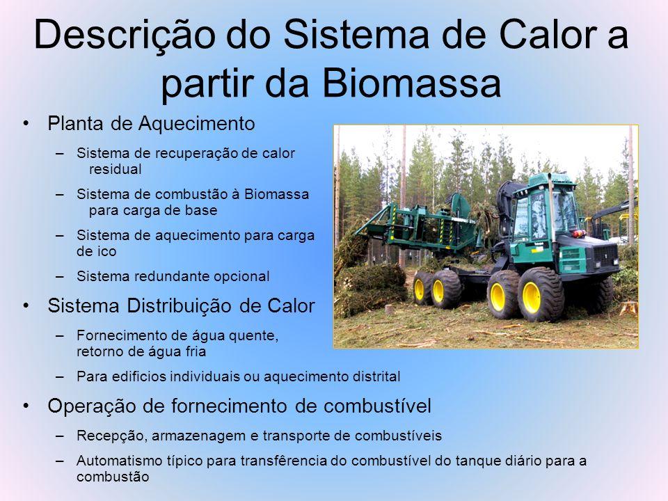 Descrição do Sistema de Calor a partir da Biomassa(Cont.) Transporte de combustível Biomassa (alimentador) Armazenamento de combustível Biomassa (alimentador) Recepção de combustível Biomassa (alimentador) Fornecimento de água quente Sistema de exaustão e chaminé Remoção e armazenamento de cinzas Caldeira de apoio e pico Transferência Câmara de combustão Coletor de partículas Trocador de calor