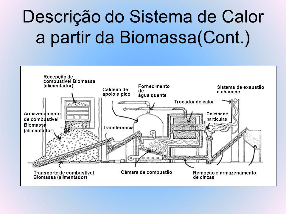 Descrição do Sistema de Calor a partir da Biomassa(Cont.) Transporte de combustível Biomassa (alimentador) Armazenamento de combustível Biomassa (alim