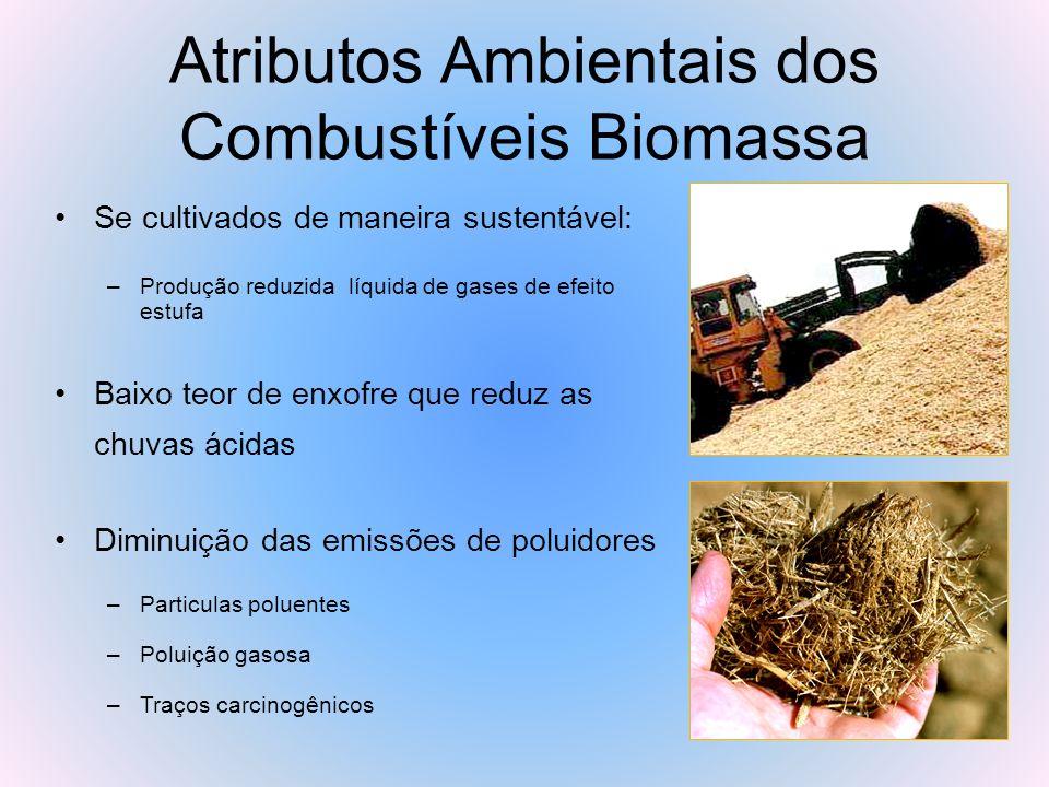 Atributos Ambientais dos Combustíveis Biomassa Se cultivados de maneira sustentável: –Produção reduzida líquida de gases de efeito estufa Baixo teor d