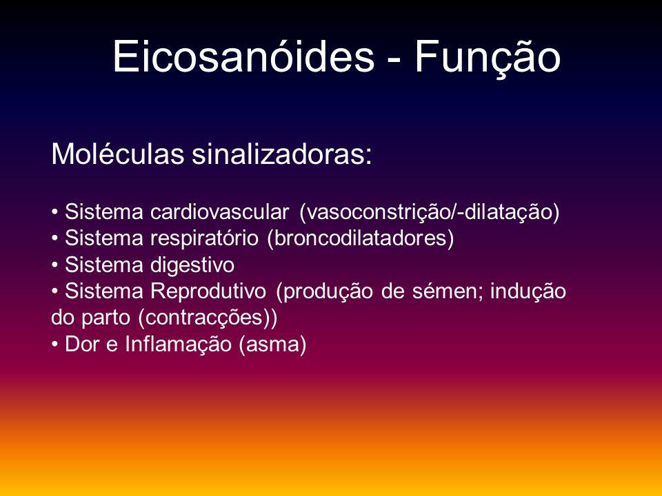 Eicosanóides - Função Moléculas sinalizadoras: Sistema cardiovascular (vasoconstrição/-dilatação) Sistema respiratório (broncodilatadores) Sistema dig