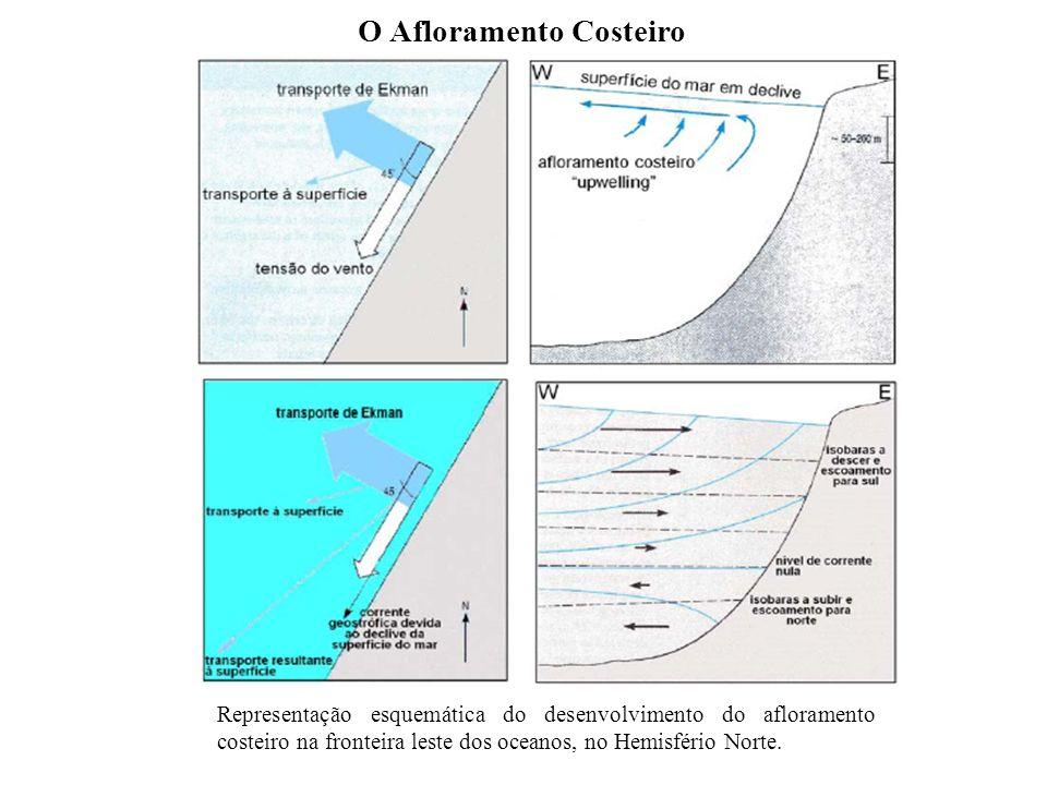 O Afloramento Costeiro Representação esquemática do desenvolvimento do afloramento costeiro na fronteira leste dos oceanos, no Hemisfério Norte.