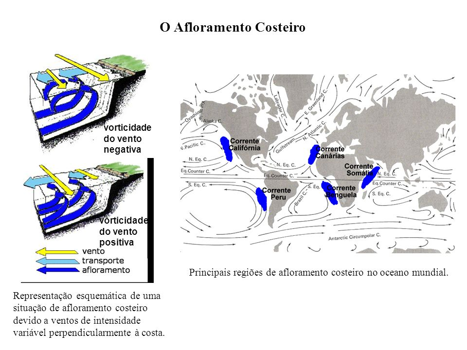 O Afloramento Costeiro Representação esquemática de uma situação de afloramento costeiro devido a ventos de intensidade variável perpendicularmente à