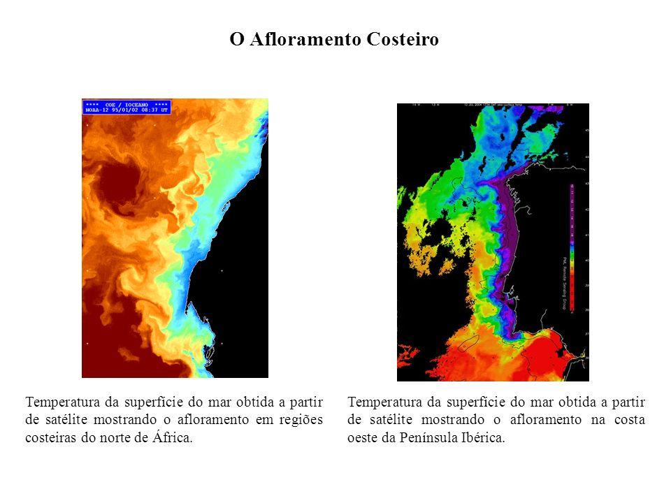 O Afloramento Costeiro Temperatura da superfície do mar obtida a partir de satélite mostrando o afloramento em regiões costeiras do norte de África. T