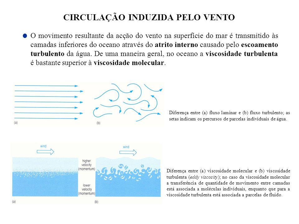 CIRCULAÇÃO INDUZIDA PELO VENTO O movimento resultante da acção do vento na superfície do mar é transmitido às camadas inferiores do oceano através do