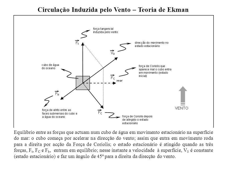Circulação Induzida pelo Vento – Teoria de Ekman Equilíbrio entre as forças que actuam num cubo de água em movimento estacionário na superfície do mar
