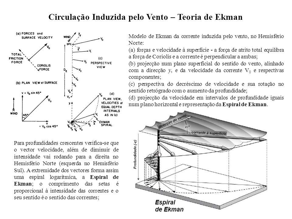 Circulação Induzida pelo Vento – Teoria de Ekman Modelo de Ekman da corrente induzida pelo vento, no Hemisfério Norte: (a) forças e velocidade à super