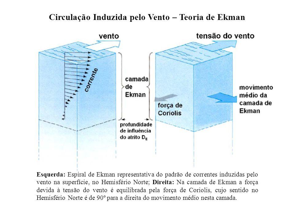 Circulação Induzida pelo Vento – Teoria de Ekman Esquerda: Espiral de Ekman representativa do padrão de correntes induzidas pelo vento na superfície,