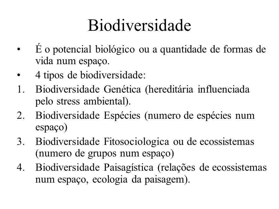 Biodiversidade É o potencial biológico ou a quantidade de formas de vida num espaço. 4 tipos de biodiversidade: 1.Biodiversidade Genética (hereditária