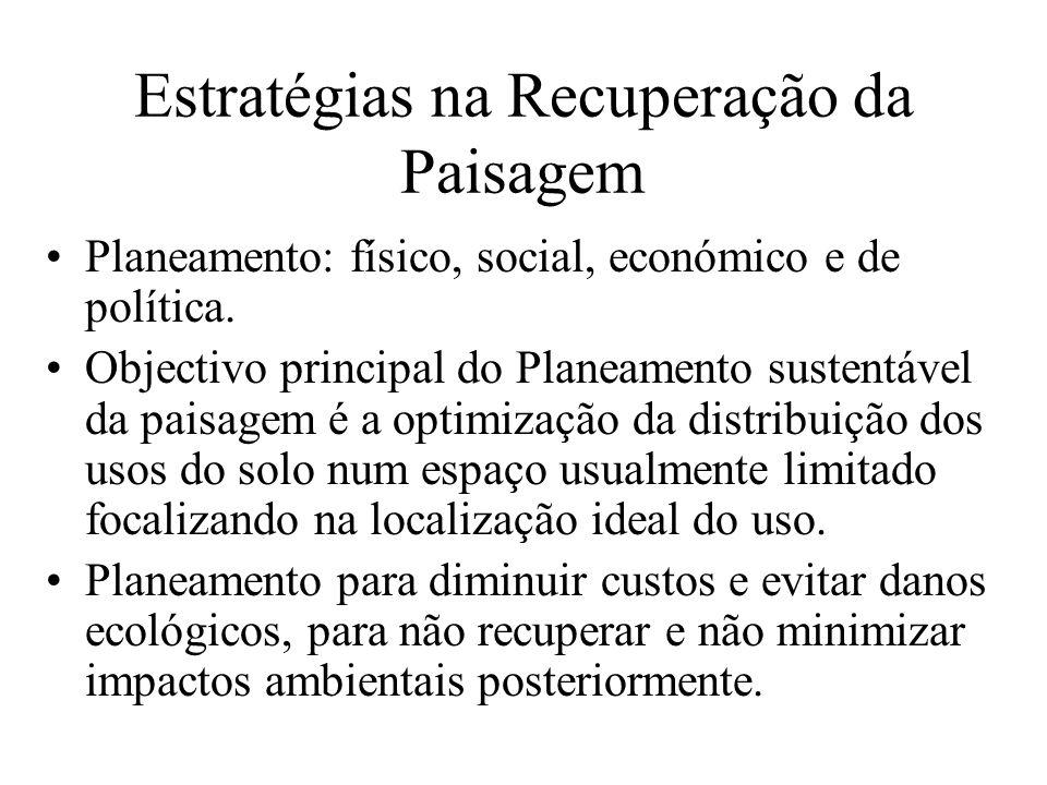 Estratégias na Recuperação da Paisagem Planeamento: físico, social, económico e de política. Objectivo principal do Planeamento sustentável da paisage