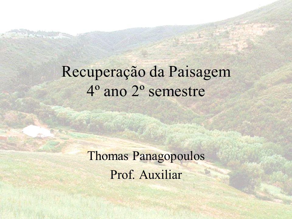 Recuperação da Paisagem 4º ano 2º semestre Thomas Panagopoulos Prof. Auxiliar