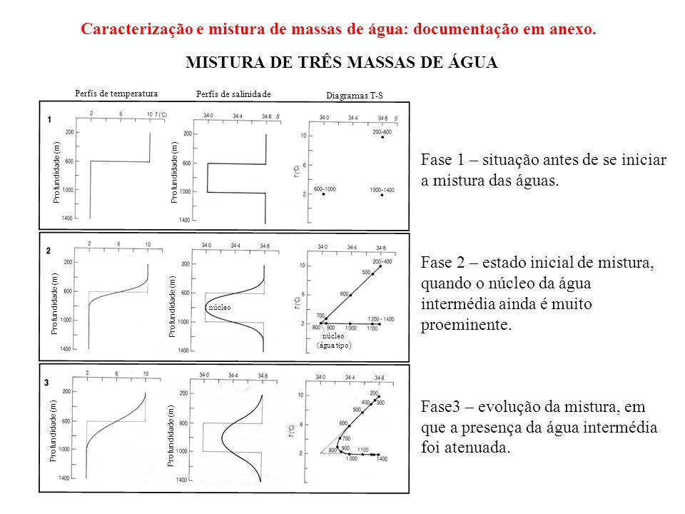 Profundidade (m) núcleo (água tipo) núcleo Perfís de temperatura Perfís de salinidade Diagramas T-S MISTURA DE TRÊS MASSAS DE ÁGUA Fase 1 – situação a