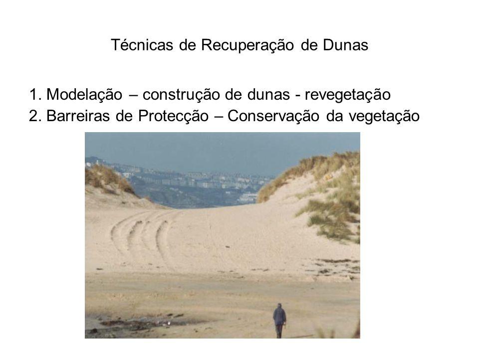 Técnicas de Recuperação de Dunas 1.Modelação – construção de dunas - revegetação 2.