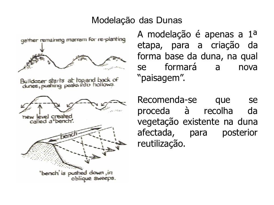 Modelação das Dunas A modelação é apenas a 1ª etapa, para a criação da forma base da duna, na qual se formará a nova paisagem.