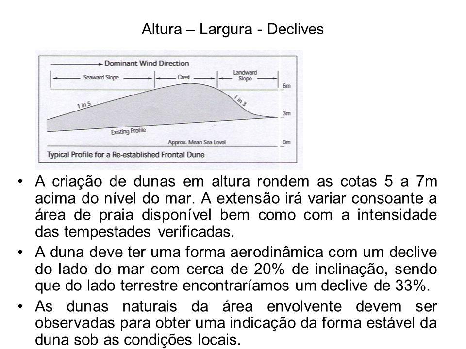Altura – Largura - Declives A criação de dunas em altura rondem as cotas 5 a 7m acima do nível do mar.