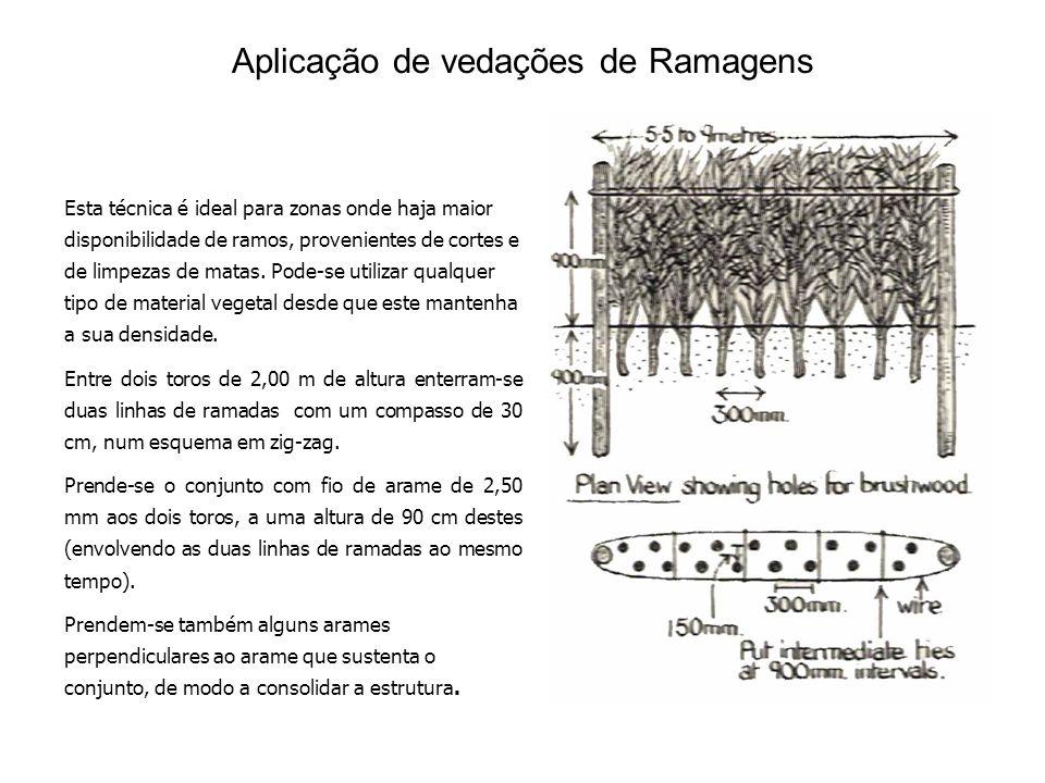 Aplicação de vedações de Ramagens Esta técnica é ideal para zonas onde haja maior disponibilidade de ramos, provenientes de cortes e de limpezas de matas.
