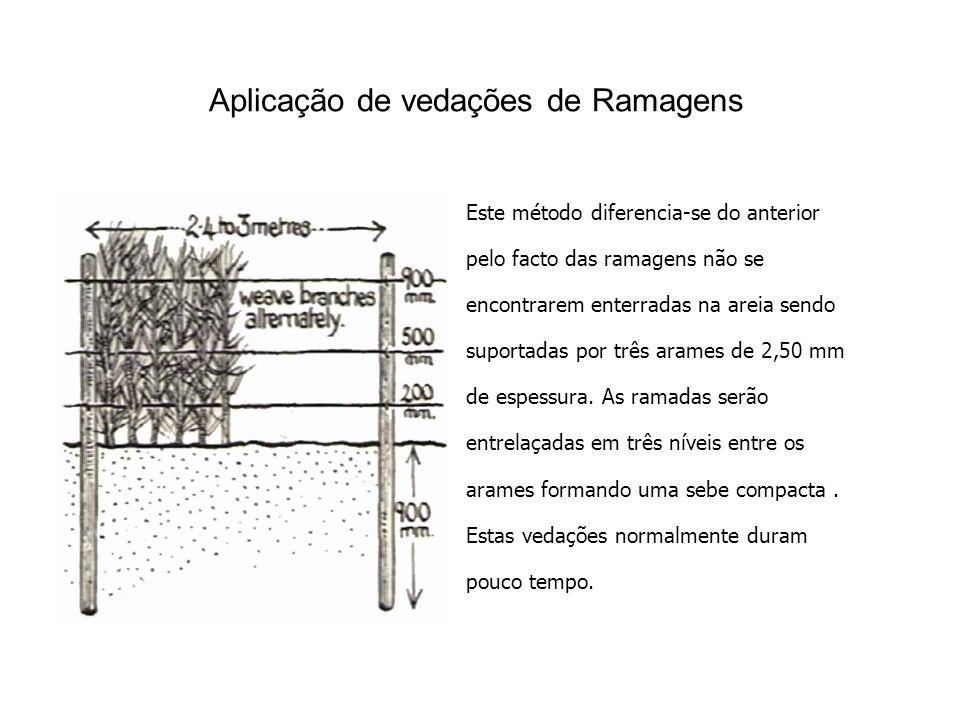 Aplicação de vedações de Ramagens Este método diferencia-se do anterior pelo facto das ramagens não se encontrarem enterradas na areia sendo suportadas por três arames de 2,50 mm de espessura.