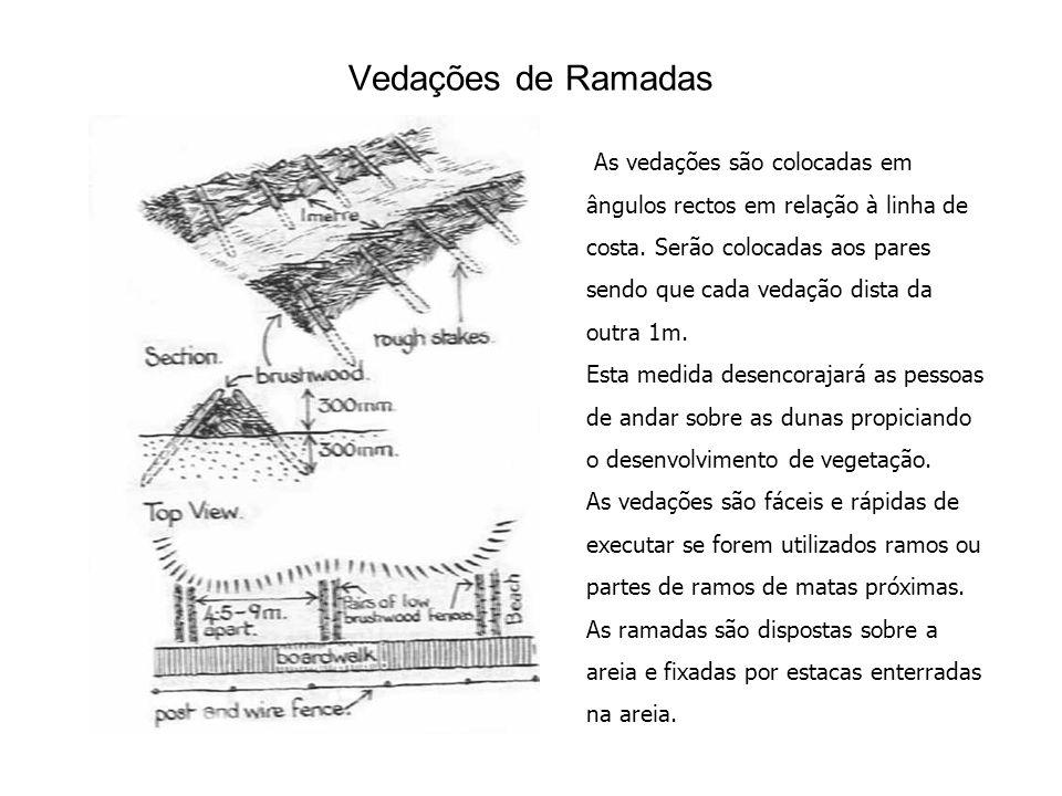 Vedações de Ramadas As vedações são colocadas em ângulos rectos em relação à linha de costa.