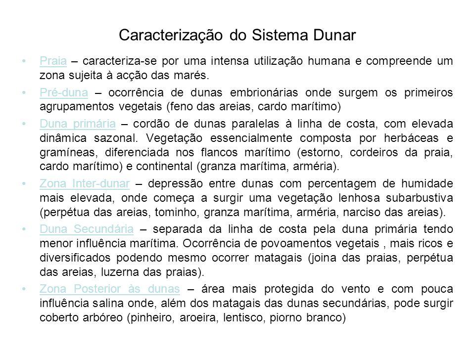 Caracterização do Sistema Dunar Praia – caracteriza-se por uma intensa utilização humana e compreende um zona sujeita à acção das marés.