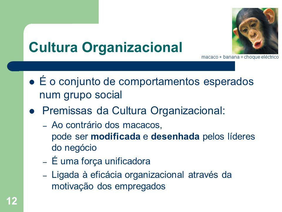 12 Cultura Organizacional É o conjunto de comportamentos esperados num grupo social Premissas da Cultura Organizacional: – Ao contrário dos macacos, p