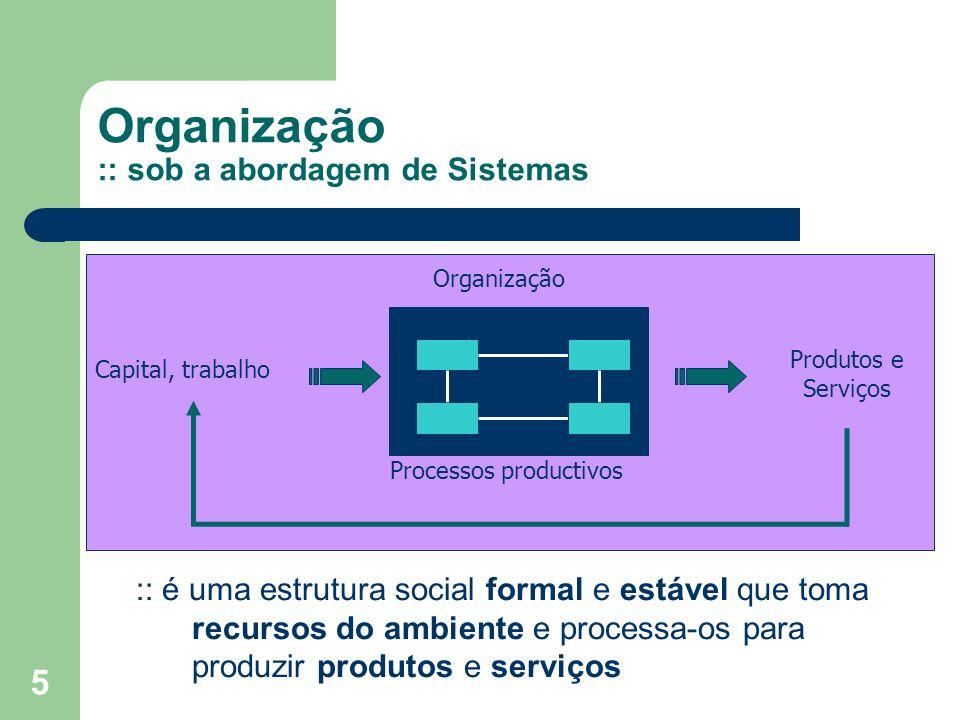 5 Organização :: sob a abordagem de Sistemas Capital, trabalho Produtos e Serviços Processos productivos Organização :: é uma estrutura social formal