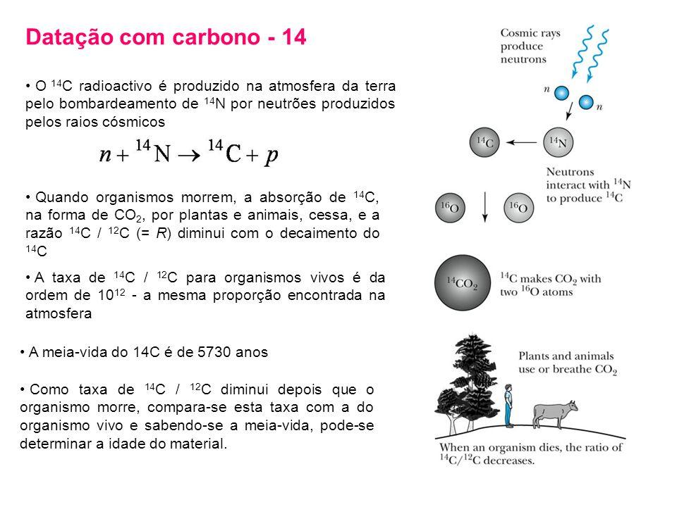 Datação com carbono - 14 O 14 C radioactivo é produzido na atmosfera da terra pelo bombardeamento de 14 N por neutrões produzidos pelos raios cósmicos