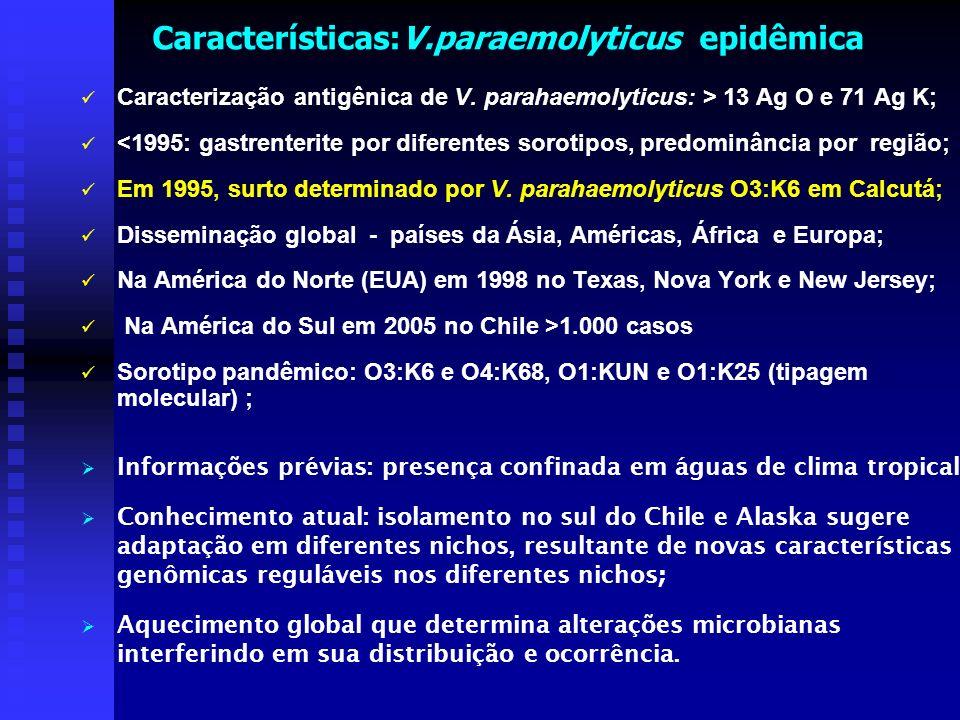 Características:V.paraemolyticus epidêmica Caracterização antigênica de V. parahaemolyticus: > 13 Ag O e 71 Ag K; <1995: gastrenterite por diferentes