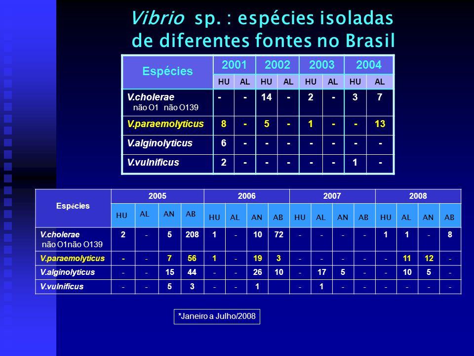 Vibrio sp. : espécies isoladas de diferentes fontes no Brasil Espécies 2001200220032004 HUALHUALHUALHUAL V.cholerae não O1 não O139 --14-2-37 V.paraem