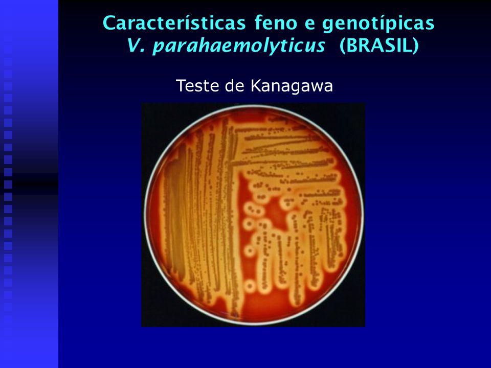 Características feno e genotípicas V. parahaemolyticus (BRASIL) Teste de Kanagawa