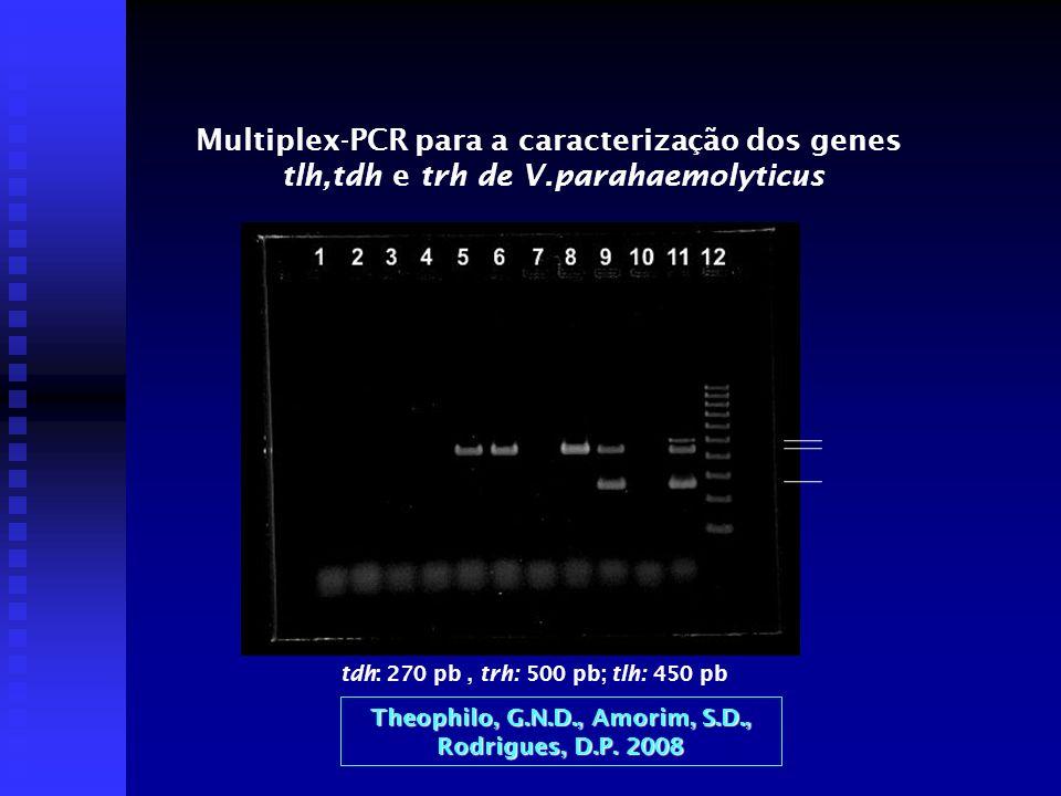 Multiplex-PCR para a caracterização dos genes tlh,tdh e trh de V.parahaemolyticus tdh: 270 pb, trh: 500 pb; tlh: 450 pb Theophilo, G.N.D., Amorim, S.D