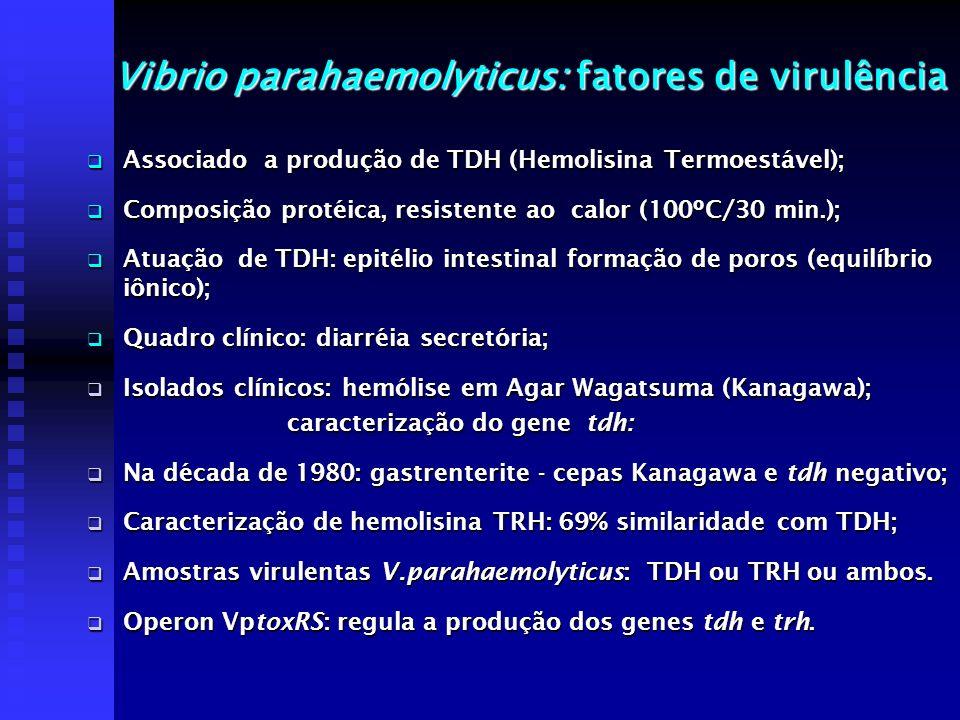 Vibrio parahaemolyticus: fatores de virulência Associado a produção de TDH (Hemolisina Termoestável); Associado a produção de TDH (Hemolisina Termoest