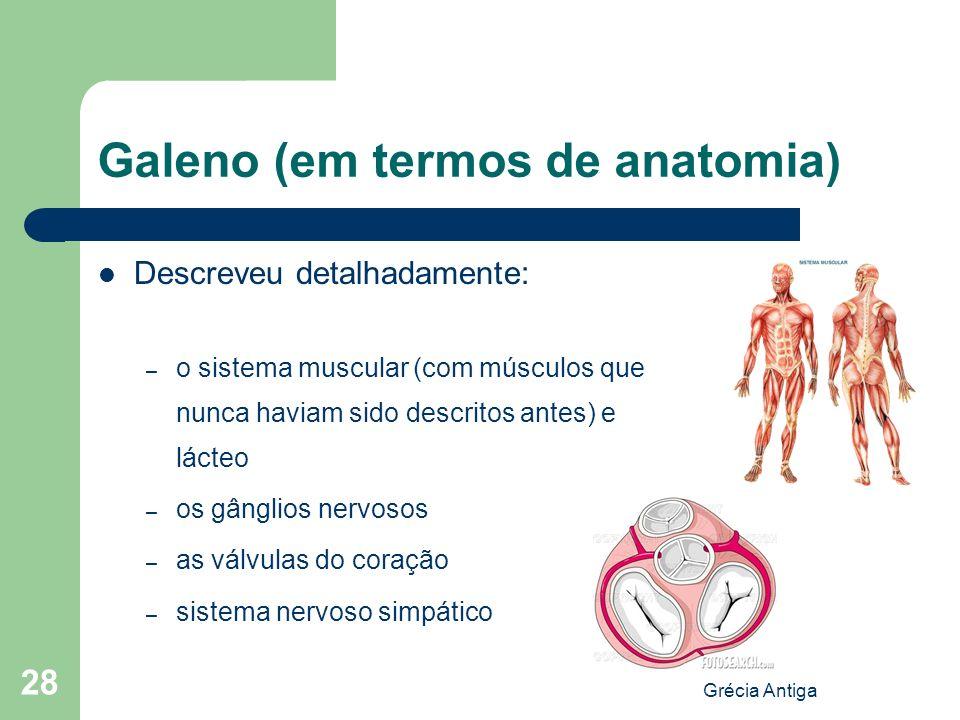 Grécia Antiga 28 Galeno (em termos de anatomia) Descreveu detalhadamente: – o sistema muscular (com músculos que nunca haviam sido descritos antes) e