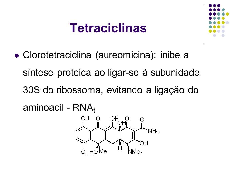 Tetraciclinas Clorotetraciclina (aureomicina): inibe a síntese proteica ao ligar-se à subunidade 30S do ribossoma, evitando a ligação do aminoacil - R