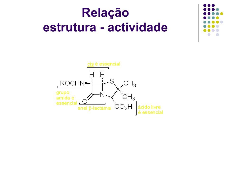 Relação estrutura - actividade