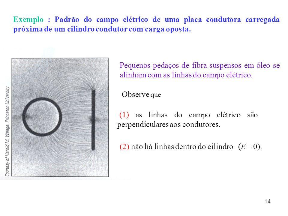 14 Exemplo : Padrão do campo elétrico de uma placa condutora carregada próxima de um cilindro condutor com carga oposta. (1) as linhas do campo elétri