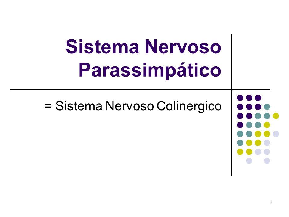 1 Sistema Nervoso Parassimpático = Sistema Nervoso Colinergico