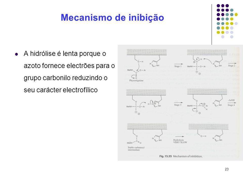 23 Mecanismo de inibição A hidrólise é lenta porque o azoto fornece electrões para o grupo carbonilo reduzindo o seu carácter electrofílico