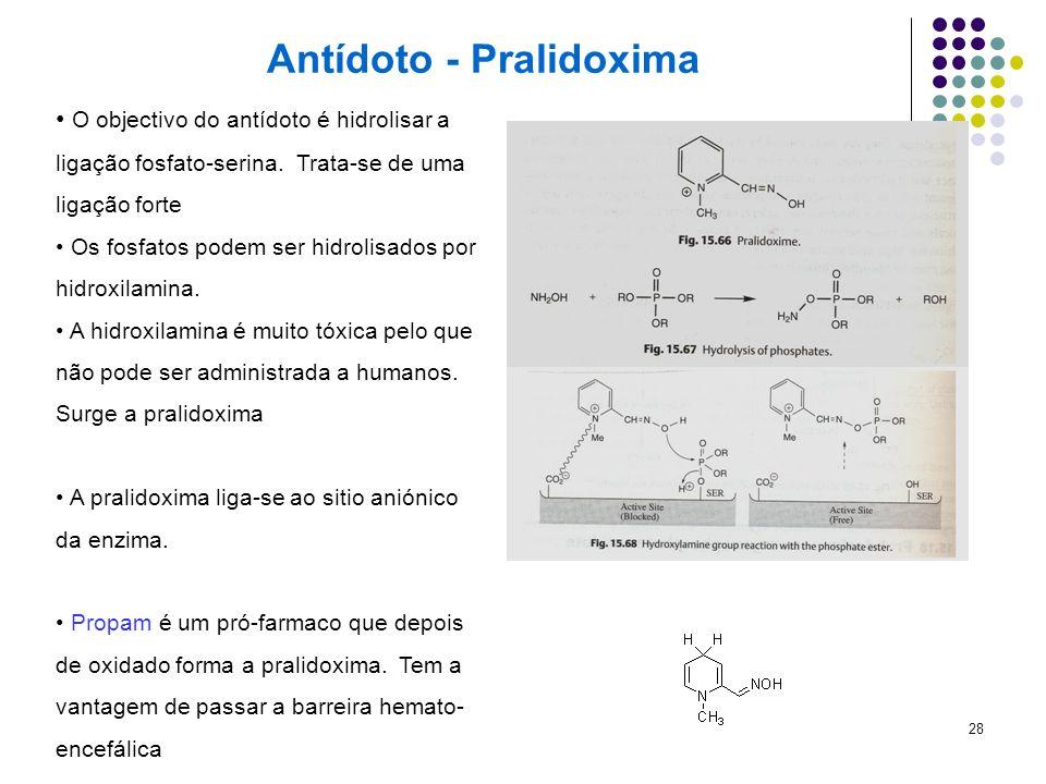28 Antídoto - Pralidoxima O objectivo do antídoto é hidrolisar a ligação fosfato-serina. Trata-se de uma ligação forte Os fosfatos podem ser hidrolisa
