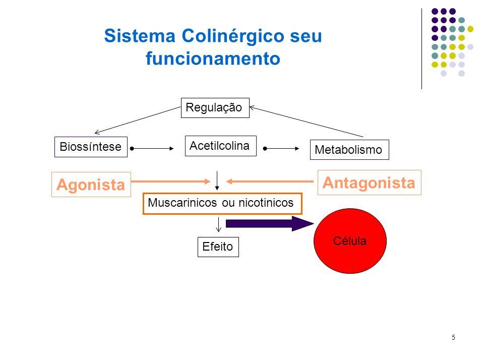 5 Biossíntese Acetilcolina Muscarinicos ou nicotinicos Metabolismo Regulação Efeito Agonista Antagonista Célula Sistema Colinérgico seu funcionamento